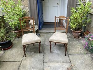 Pair of Edwardian mahogany hall chairs with satinwood inlay