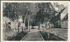 Ansichtskarte Straßenansicht mit Baumreihen und Parkbänken - alte Aufnahme