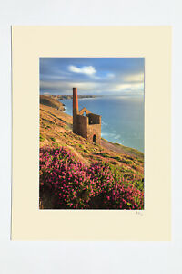 """7x5"""", A4 or A3 photograph mounted or framed of heather at Wheal Coates, Cornwall"""