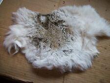 NICE tanned JACK RABBIT FUR pelt skin NATIVE CRAFTS supplies bag purse pouch R20