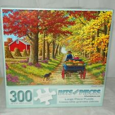 Bits and Pieces Jigsaw Puzzle Shady Lane 300 Pieces NEW 44148
