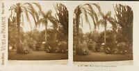 MONACO Monte-Carlo Jardins Photo Stereo Vintage Argentique PL61L1173