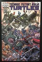 Teenage Mutant Ninja Turtles #43 IDW RI Variant Comic Retailer Incentive TMNT