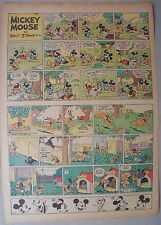 Mickey Mouse Sunday Page by Walt Disney from 8/14/1938 Tabloid Page Size