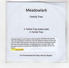 (GI335) Meadowlark, Family Tree - 2014 DJ CD