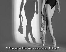 Ballet Dance Motivational Poster Art Print Shoes Flats Tutu Leotard Skirt MVP506
