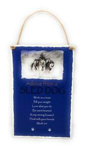 """Advice from a Sled Dog Novelty Inspirational 5.5""""x8.5"""" Wood Plaque Sign"""