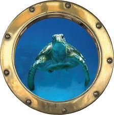 Aufkleber Schein Auge Schildkröte 40x40cm Ref H309