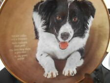 DANBURY MINT PLATE POETRY OF THE BORDER COLLIE DOG A TREASURE COLLECTORS