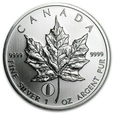 2012 Canadian $ 5 Dollars Maple Leaf Pisa Privy 1 oz .9999 Silver Coin