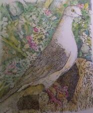 Garden Dove - Us, Small, reproduction, Realism, Birds