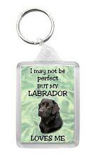Labrador Retriever (Black) Dog Keyring Keyfob 'I May Not Be Perfect But...'