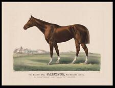 """The Racing King Salvator, 1828 antique art print, Horse Racing,  14""""x10"""""""