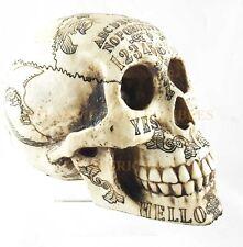 """OUIJA Symbols Skull Skeleton Head Statue Figurine 8.5"""" Long"""