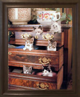 Funny Cat Kittens in Drawers Cute Animal Wall Decor Brown Rust Framed Picture