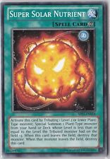 Super Solar Nutrient - AP03-EN024 - Common YuGiOh Card Astral Pack Three 3 NEW
