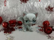Littlest Pet Shop Grey and White Angora Long Hair Cat #345