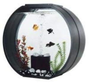 Fish R Fun Deco Fish Tank, 10 Litre, Black