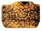 Taurus, Yellow Snake Skin Print, OWB Kydex Gun Holsters