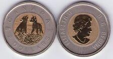 2012 Canada Wolf Cubs $2.00 Dollar Specimen Toonie