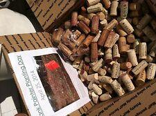 NATURAL WINE CORKS - NO CHAMPAGNE, SYNTHETICS-OVER 600 PER BOX - NON PROFIT