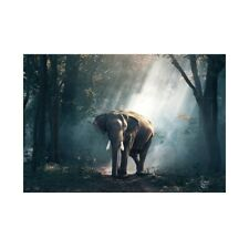 Elephant In The Forest Art Paintings Prints Canvas Poster Home Ornaments Gift