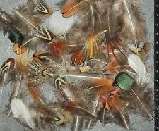 LOT MIX Melange 200 plumes de Faisans pheasants feathers scrapbooking FMA-1