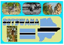 BOTSWANA, SUD AFRICA - souvenir gadget CALAMITA FRIGO / VISTE / BANDIERE/regali
