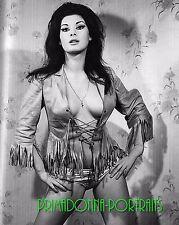 EDWIGE FENECH 8x10 Lab Photo 1970s Sexy Busty, Risque Fringe Glamour Portrait
