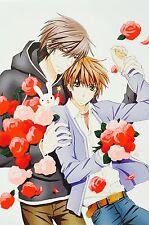 "Japanese BL Anime Sekai Ichi Hatsukoi Onodera Takano POSTER #4 11.5""x17"""