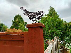 Sparrow Garden bird Silhouette Metal fence blue tit