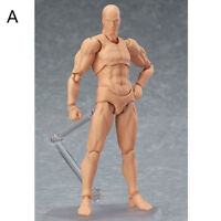 PVC She/he S.H.Figuarts SHF Body kun DX SET Action Figure In Box Kids Toy