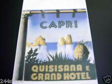 Vintage Luggage Label - Baggage Decal CAPRI QUISISANA E GRAND HOTEL - NEW
