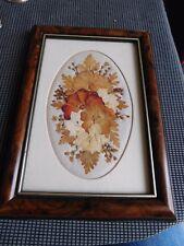 Miniature fleurs pressées Joanna Sheen encadrée  sous verre