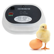 12 Digital Egg Incubator Hatcher Temperature Control Automatic Turning Chicken