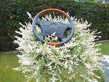 Original Mercedes ZEBRANO Holzlenkrad Lenkrad SRS R129 W124 W126 W140 W463 S Kl