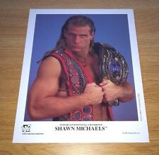 Shawn Michaels P-302 color wwe 8x10 wrestling official promo photo 1995