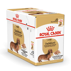 Royal Canin Dachshund Adult Wet Dog Food, Maintains Muscle Tone, 10m+, 12 x 85g