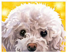 """""""WHITE POODLE"""" Watercolor Dog ART Print Signed by Artist DJR"""