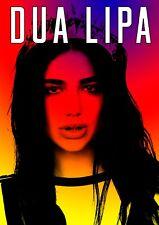 Dua Lipa poster - #10 - Retro Effect - Signed (copy) - A4 (297mm x 210mm)