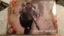 the walking dead survival box cards infected