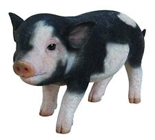 Standing Baby Pig Dark Brown  - Life Like Figurine Statue Home / Garden