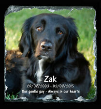 Personalised SQU Pet Stone - Urn Ashes Cremation Burial Headstone Funeral Death