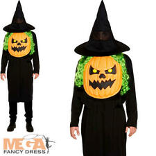 Pumpkin with Giant Face Adults Fancy Dress Mens Ladies Halloween Costume Outfit