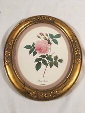 Vintage Windsor Art Products Wall Oval Art ~ Rosa Indica P.J. Rodoute