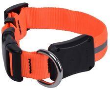 Nite Ize Small Bright Orange LED Dawg Collar Nylon Glow/Flash Modes NND2S-31-R3
