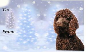 Irish Water Spaniel Christmas Labels by Starprint