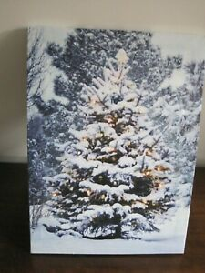 Christmas LED Light up canvas Picture Christmas Tree size batteries not supplied