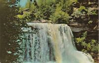 Blackwater Falls State Park, WV - View of Falls and Surrounding Foliage