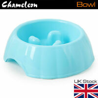 Slow Feed Pet Dog Food Bowl for Controlling Eating Pace - 3 Colours